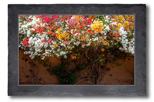 Blütengemeinschaft