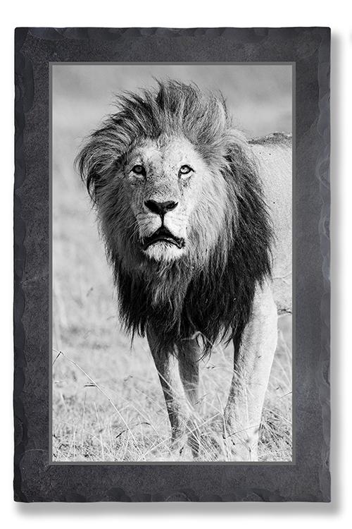 Löwenmann